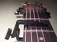 also Liberty Flip capo
